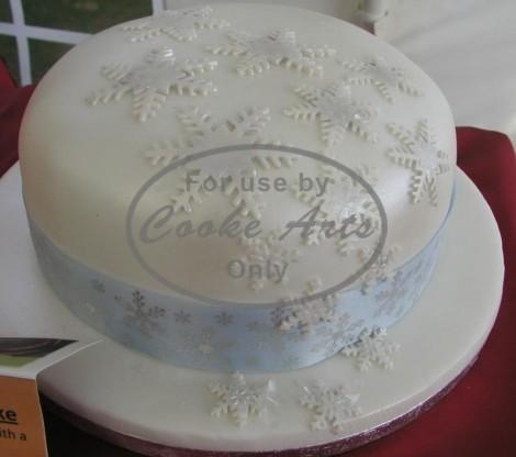 1 Tier Chrismas Cake-2